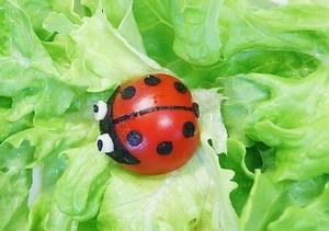 Hai cách tỉa cà chua bi đơn giản mà xinh xắn 9