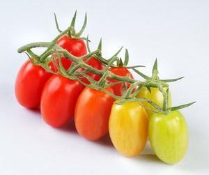 Hai cách tỉa cà chua bi đơn giản mà xinh xắn 2