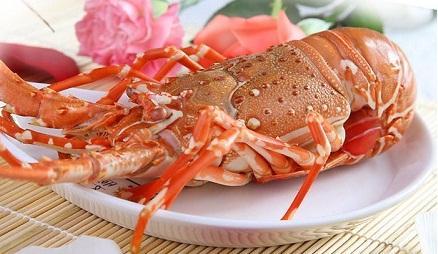 Tôm Hùm - Thưởng thức ẩm thực Cát Bà 4