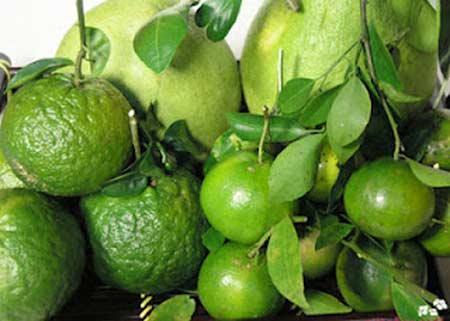 Rau, củ, quả có lợi cho sức khỏe trong thời tiết khô hanh của mùa thu