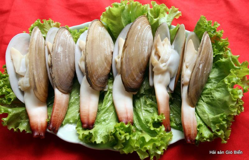 Tu Hài - Thưởng thức ẩm thực Cát Bà 2
