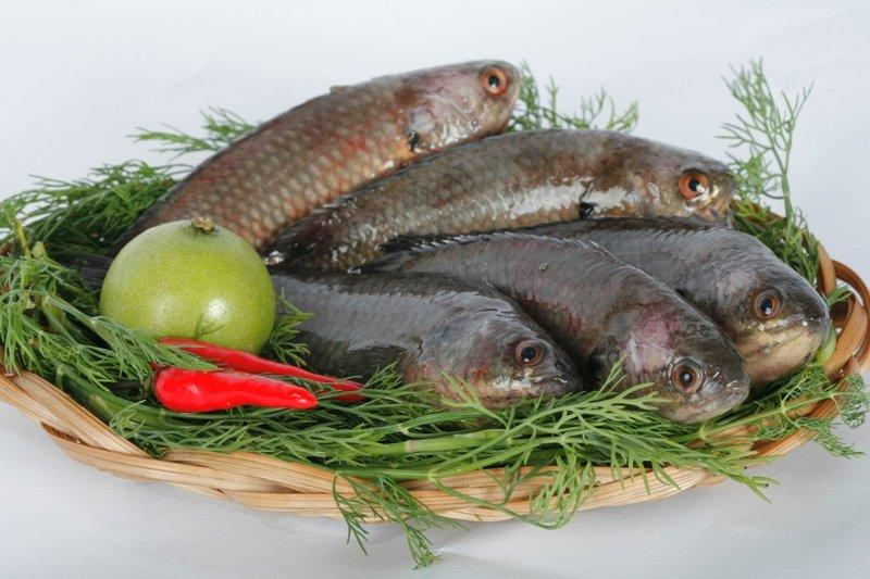 Cá rô đầm sét - Những đặc sản in đậm dấu ấn xứ Thanh 10